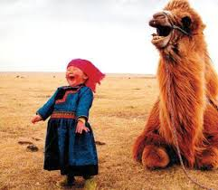 happy camel