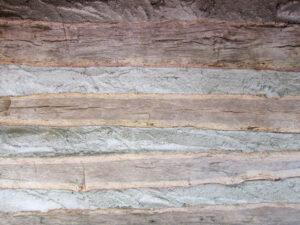 dog chestnut log wall