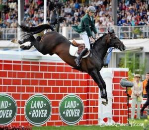 horse puissance
