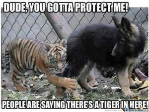 dude you gotta protect me