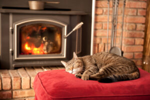 blog cat cozy woodstove
