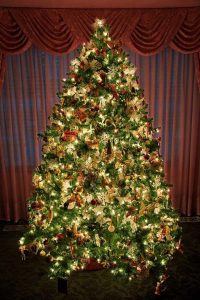 beautiful-christmas-tree3